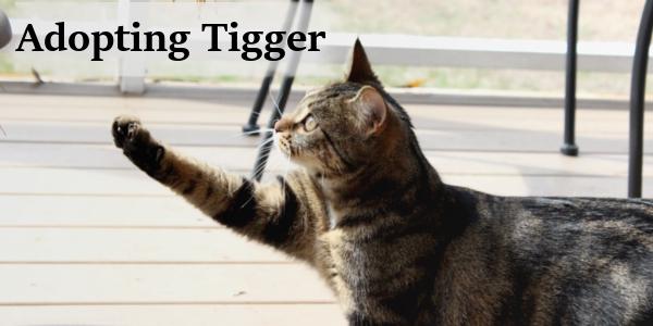 tigger2.png