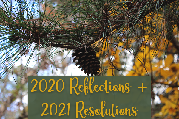 2020 Reflections and 2021 Resolutions